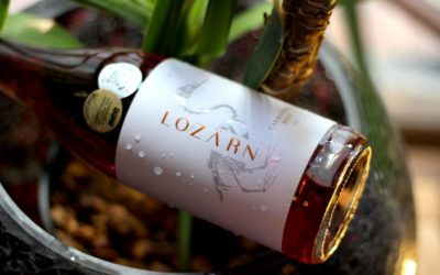 Dinner at Chef's Table Cape Town with Lozarn Wines